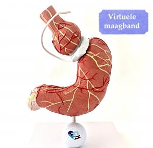 Virtuele maagband programma. Onder hypnose krijg je een virtuele maagband geinstalleerd waarmee je kunt afvallen en op gewicht blijven. Door Marjon Gaikhorst van Compleet met hypnose